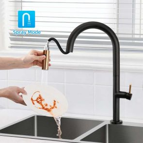 kitchen faucet with sprayer wash dish